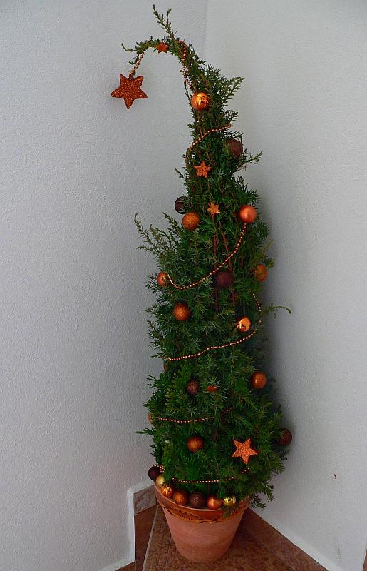 Malý vánoční stromek