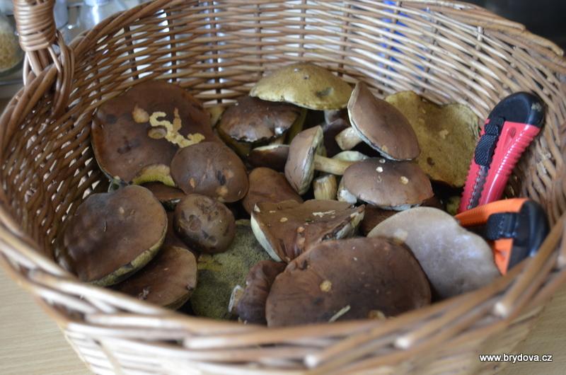 Víkend na houby