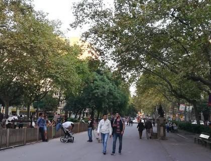 Barcelona – město stromů