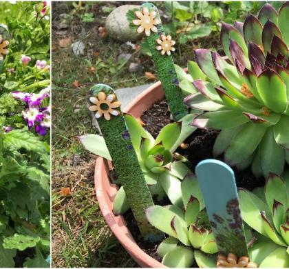 Barevné zápichy ke květinám
