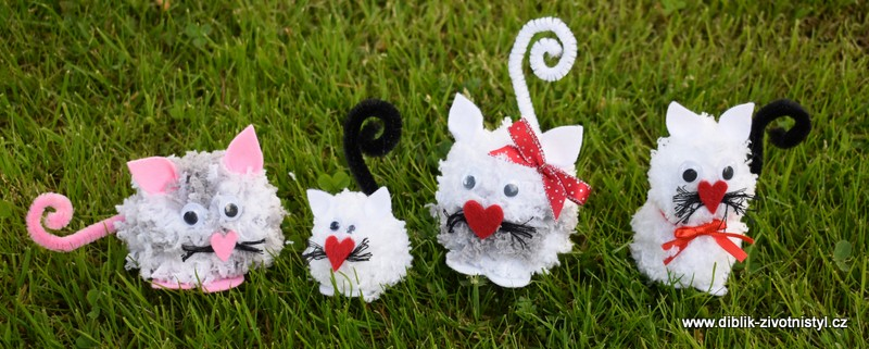 Chlupaté kočičky
