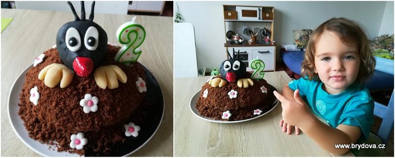 Krtkův dort s krtkem