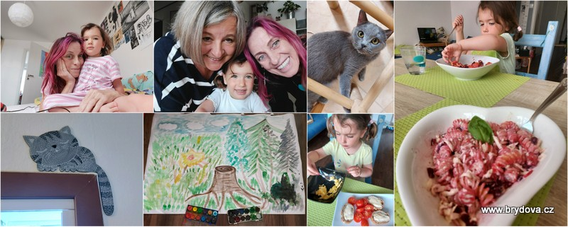 Vlog 113/21 – kočičkový, povídací, zpívací a malovací